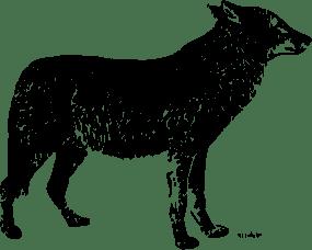 lone-wolf-pngdispositionattachment